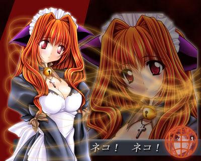 AnimeOnline135